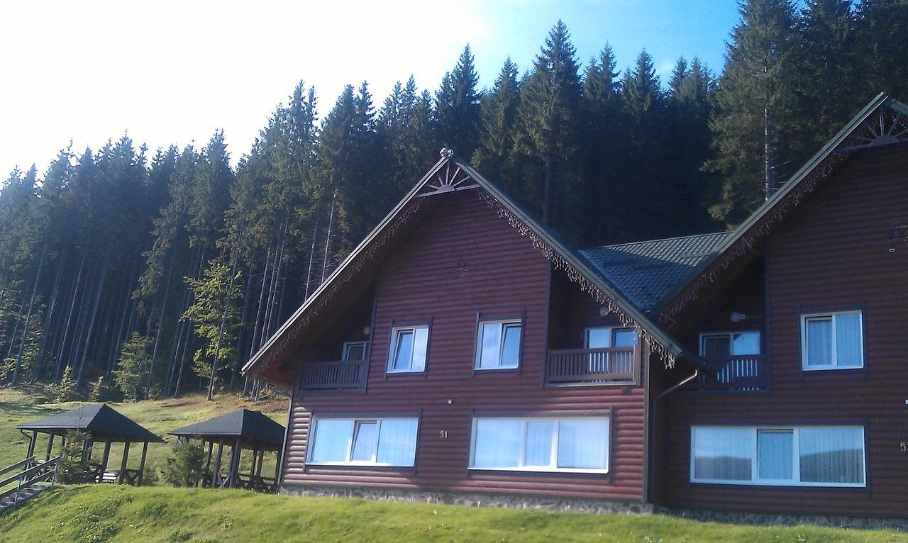 Вид из окна на наш лагерь